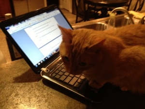 Gatsby is typing up his latest adventure.