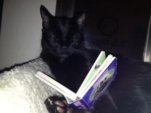 yoshi reading
