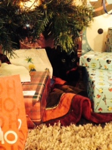 Yoshi hiding in the Christmas presents