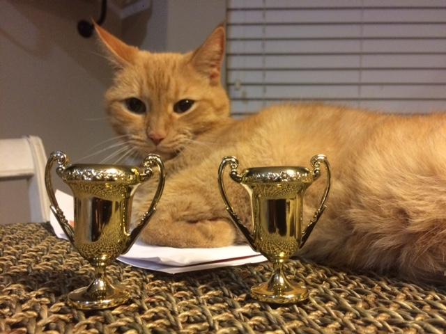 Gatsby awards